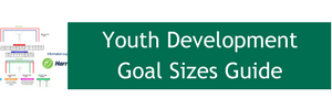 Youth Development Goal Sizes