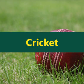 cricket best sellers
