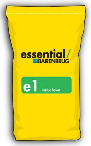 image of yellow bag with e1 title