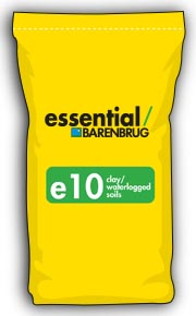 image of yellow bag with e10 title