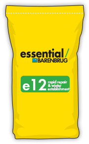 image of yellow bag with e12 title