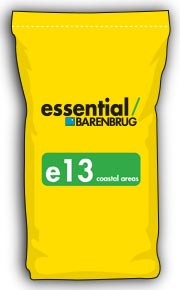 image of yellow bag with e13 title