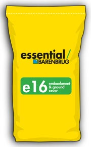 image of yellow bag with e16 title