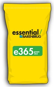 image of yellow bag with e365 title