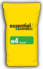 image of yellow bag with e4 title