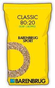 image of yellow bag with classic 80-20 title