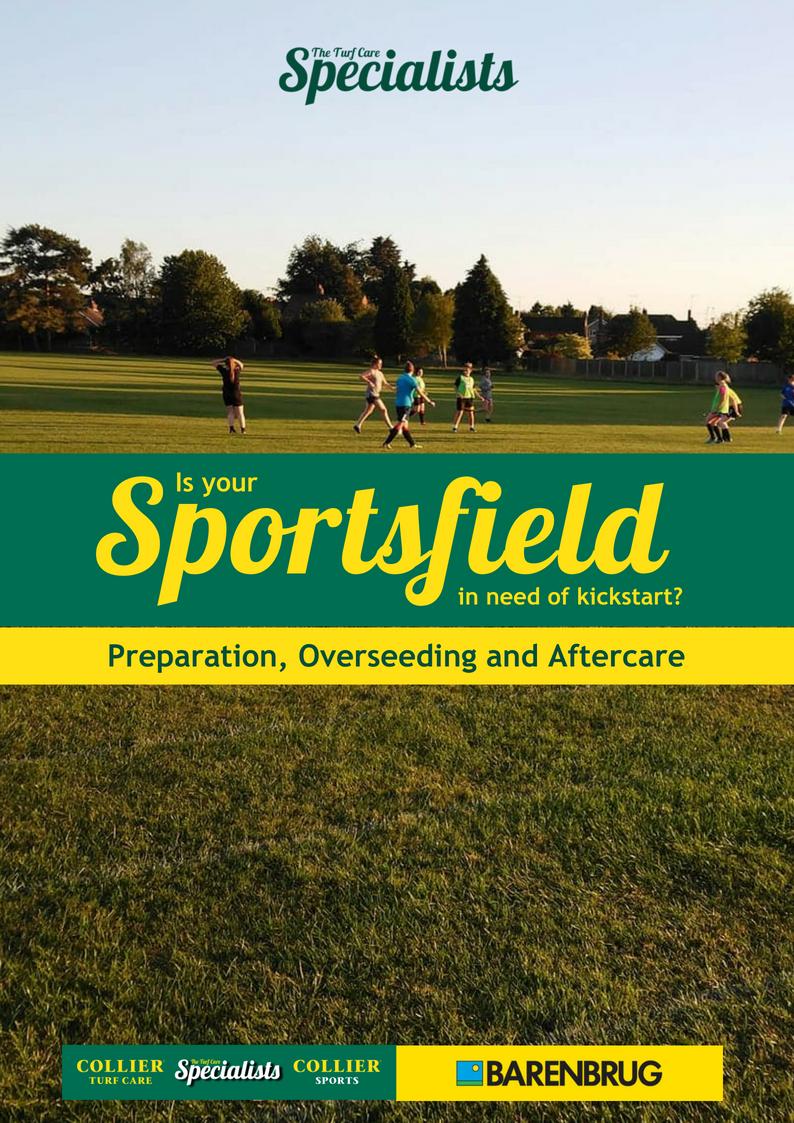 sportsfield image