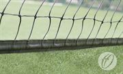 Cricket Netting with 50mm Band