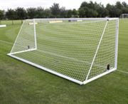 Integral Weighted Goal Nets