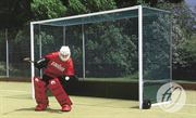 Premier Hockey Goals with Wooden Backboards